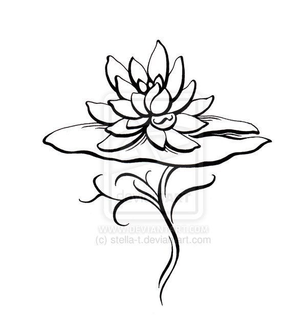 Water Lily Tatoo Design By Stella T On Deviantart Water Lily Tattoos Tattoos Lotus Tattoo