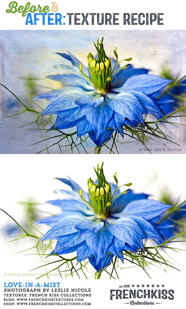 Before And After Texture Recipe Love In A Mist Photoshop Overlays Texture Photography Photo Texture