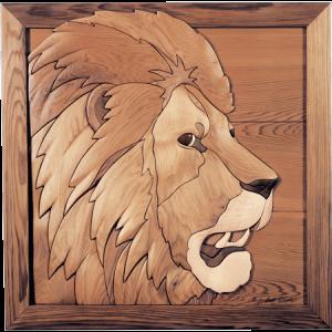 Asian Lion Endangered Species