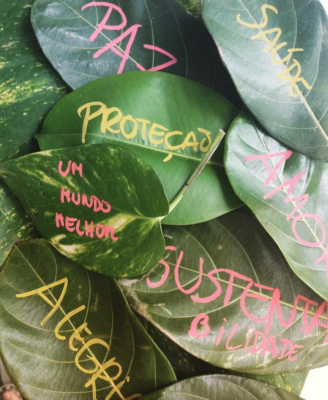 O que você deseja para o futuro do seu filho?  O aniversário do João vai ser decorado com folhas e galhos que pegamos no chão. Vai ser tudo bem orgânico bem ecológico e feito com muito amor.  FESTA PRODUZIDA COM ZERO LIXO!  #green #ecofriendly #festaecologica #festasustentavel #sustainability #sustentabilidade #maisamorporfavor #meioambiente #zerolixo #recycle #reciclagem Re-post by Hold With Hope