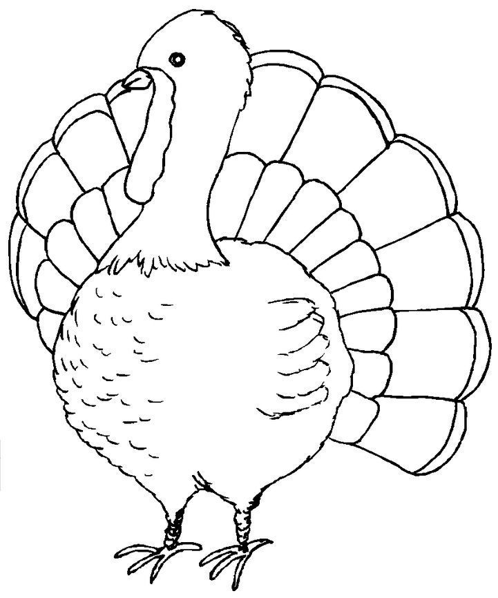 Pin de Thanksgiving Galore en Coloring Pages | Pinterest