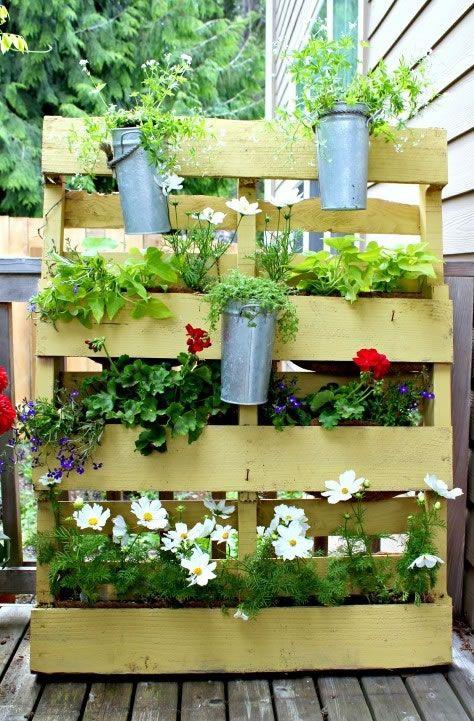 Tu jardín en un palet | Jardín, Palés y Jardines