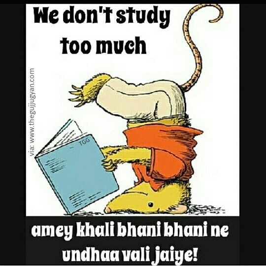 Here Is Me During Exams Thegujjugyan Gujarat Gujarati Gujju Pic By Miss Purohit Tag All Bhaneshri Ppl Funny Puns Funny Quotes Sassy Quotes
