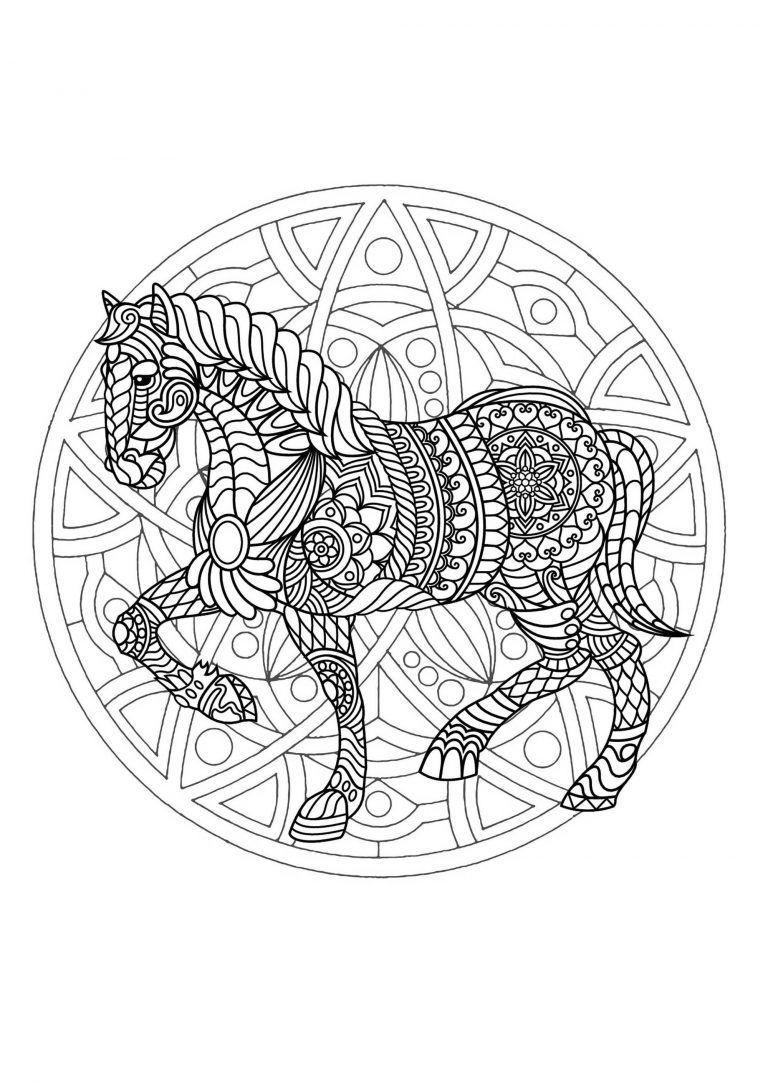 Animal Mandala Coloring Pages Con Imagenes Mandalas Animales
