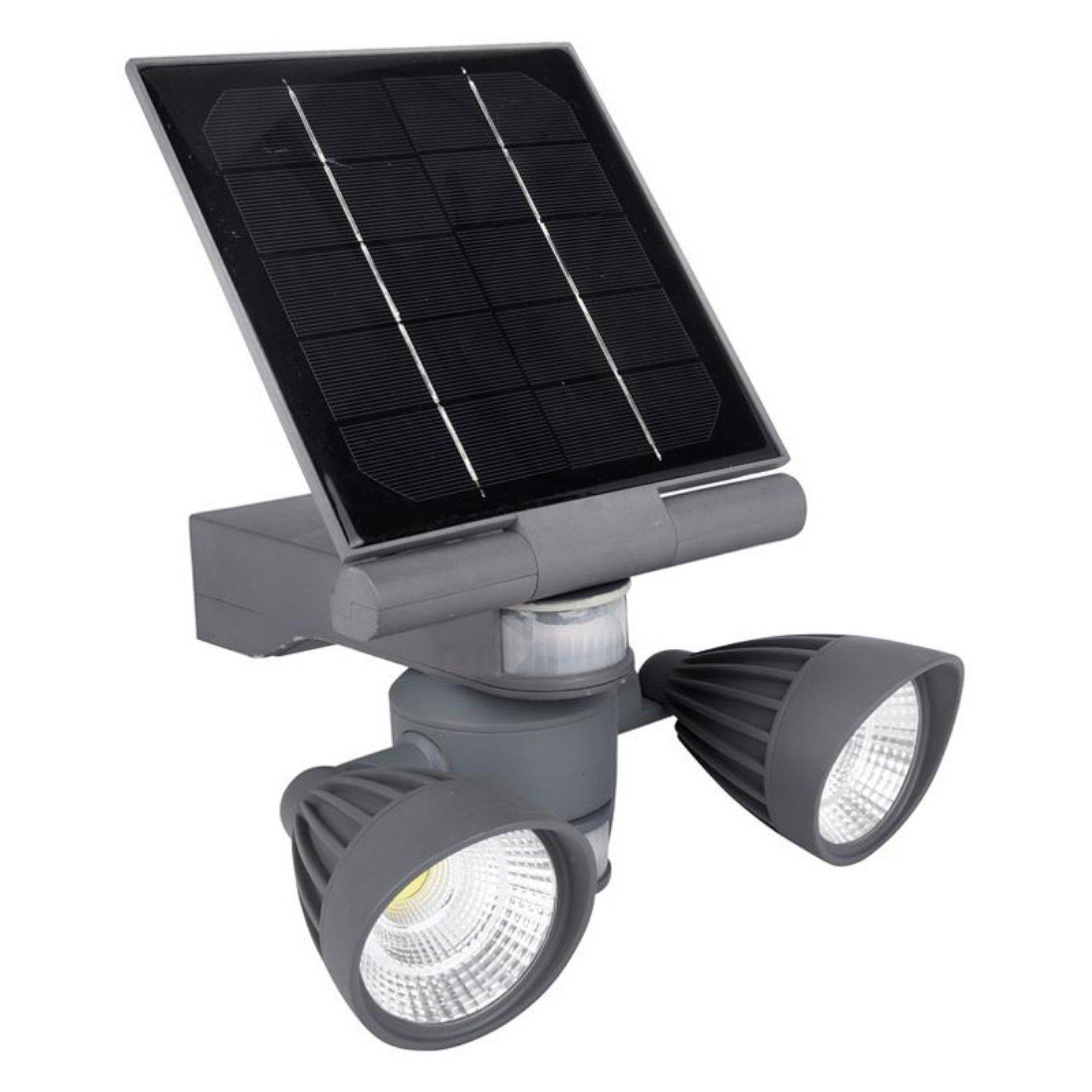 Pacific Accents Sol Wtt 1010 Outdoor Solar Spot Light