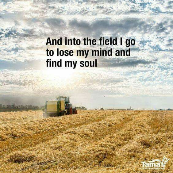 I Love Farming Wish I Was Young Enough To Have A Small Farm And