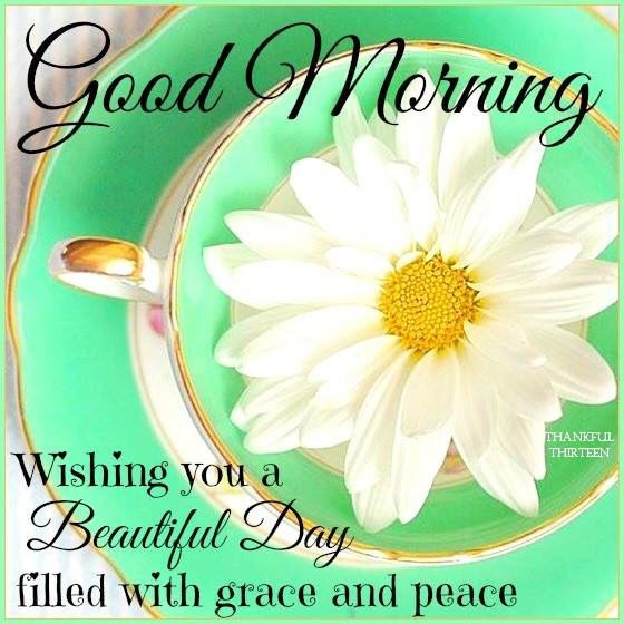 Good Morning Wishing You A Beautiful Day Morning Good Morning Morning Quotes Good Morning Quotes Morning Quo Good Morning Wishes Good Morning Morning Blessings