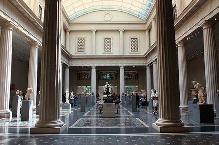 Museo Americano de Historia Natural - Buscar con Google