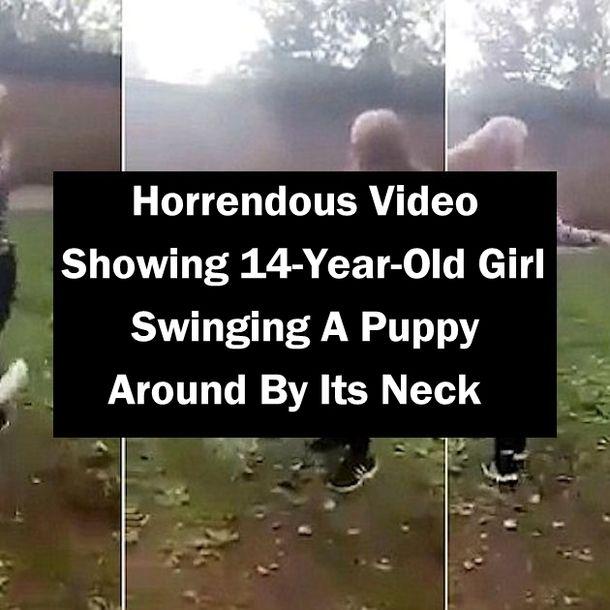 video stories swinging