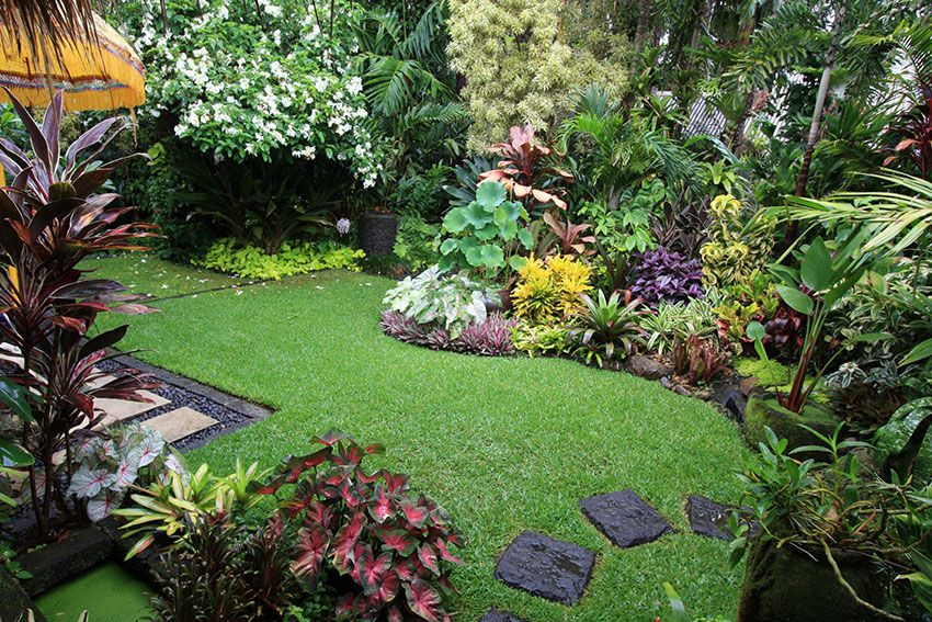 Jimmy likes this | Small tropical gardens, Small backyard ...