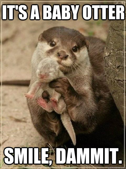 Funny Baby Smile Meme : It s a baby otter smile dammit be happy quickmeme