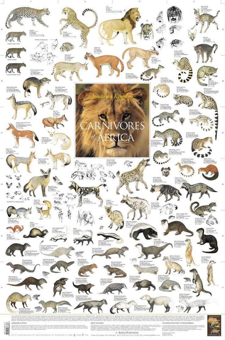 East African Mammals Poster