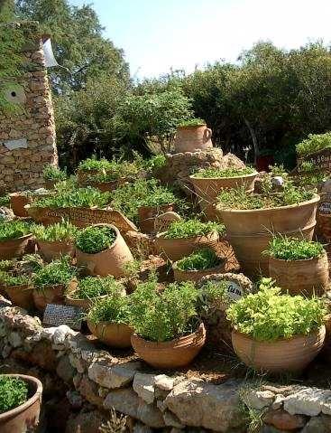 cr er un jardin d 39 herbes aromatiques mode d 39 emploi herbs kitchen gardens pinterest. Black Bedroom Furniture Sets. Home Design Ideas