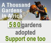 Slow Food communities have embarked on an ambitious project: to create a thousand food gardens in schools, villages and on the outskirts of cities in 25 African countries. http://fondazioneslowfood.com/pagine/eng/orti/cerca.lasso?-id_pg=30