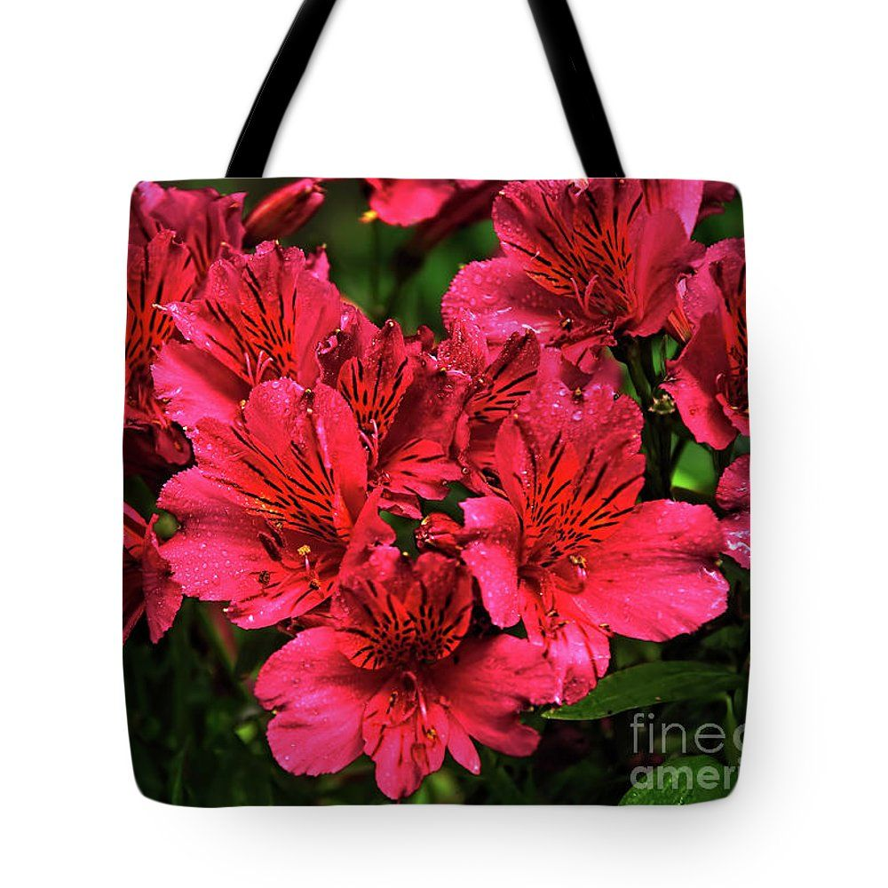 Photography Tote Bag Featuring The Photograph Delicate Princess
