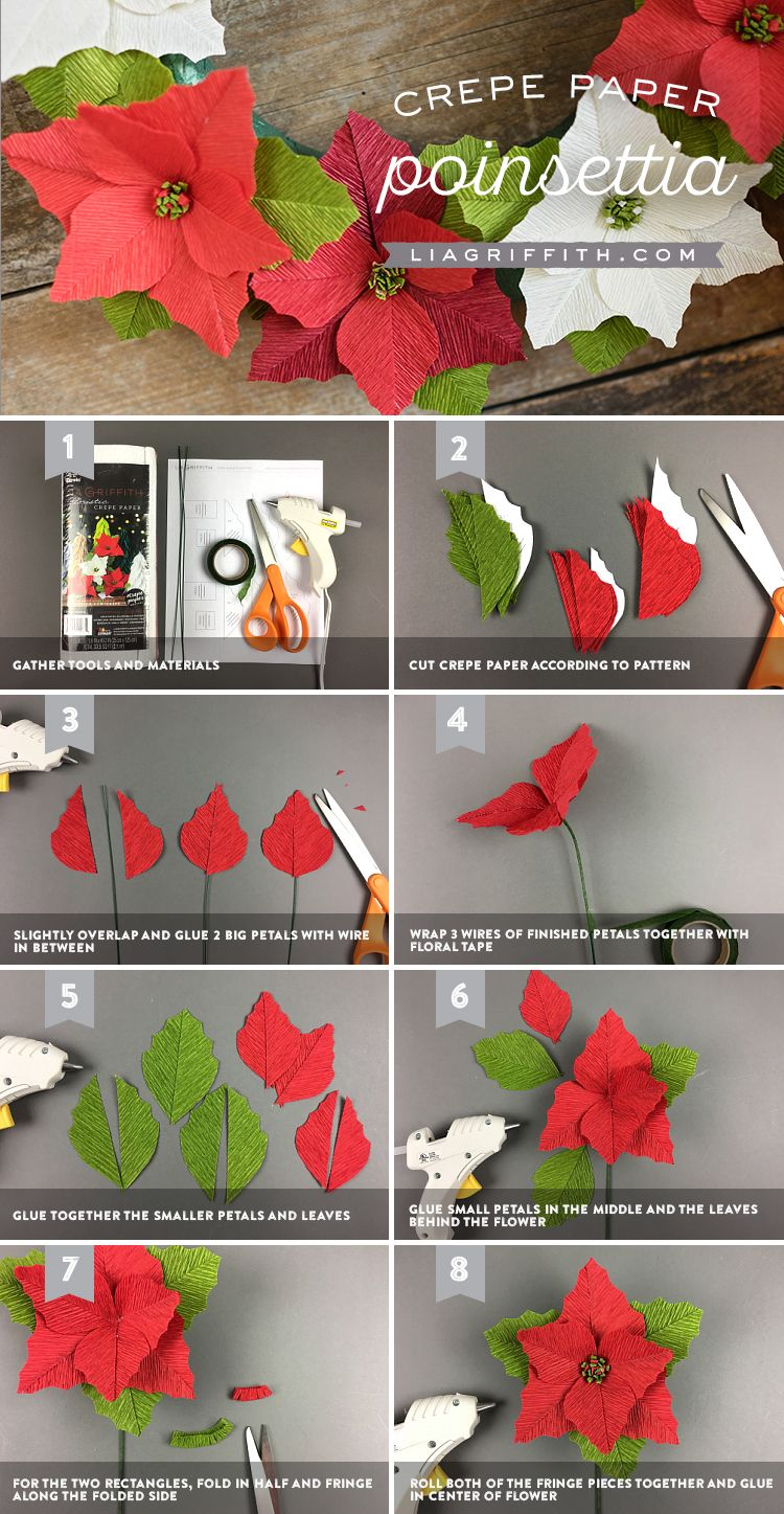 crepe paper poinsettias template and video tutorial