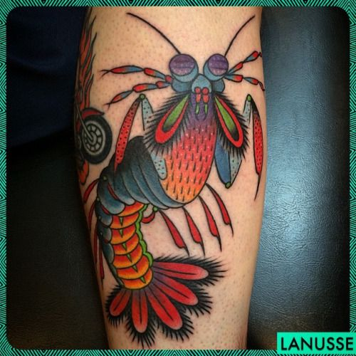 Pin By Sarah Harney On Sharksleeve Tattoos Insect Tattoo