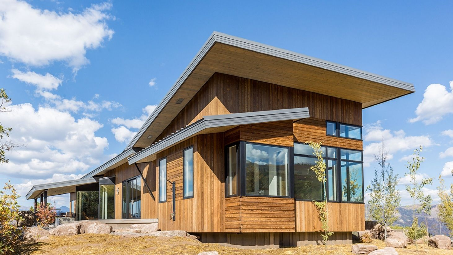 Maintenance free wood for cladding decking siding and