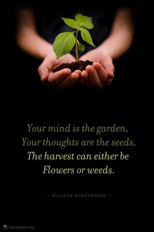 Tu mente es el jardin, tus pensamientos semillas, tú eliges la cosecha o flores o rastrojos... tú eliges...