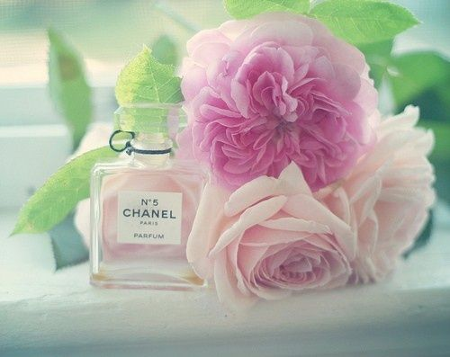 Chanel 5 With Pink Flowers Www Scentbird Do You Have