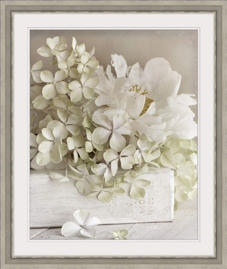 White Flowers Ii Pop Art Pictures Book And Frame Framed Wall Art