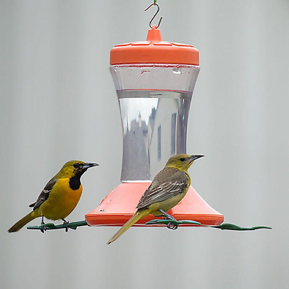 Orange Oriole Bird Feeder 24 oz Oriole bird feeders