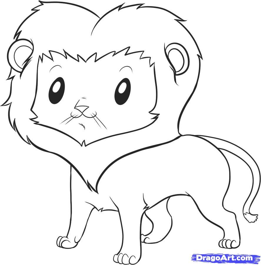 how to draw an easy lion step by step safari animals animals - Easy Animal Pictures To Draw