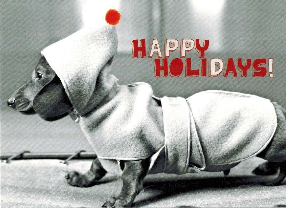DACHSHUND  BOXED HOLIDAY CARDS BOX OF 15 CARDS