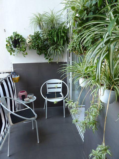 Utilice unas barras de cocina de ikea y los cubiletes para cubiertos para crear un jardin vertical le puse una loneta para terrazas tambien de ikea para