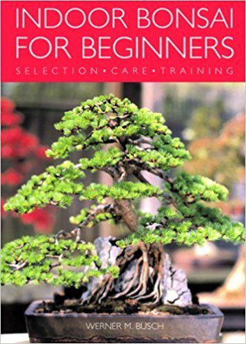 Indoor Bonsai For Beginners Selection Care Training Werner Busch 9781844033508