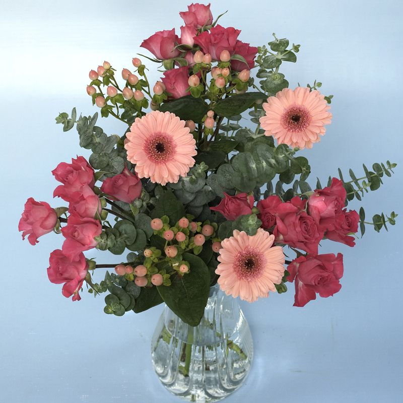 Pink panther grower choice flowers pinterest pink panthers pink panther grower choice mightylinksfo