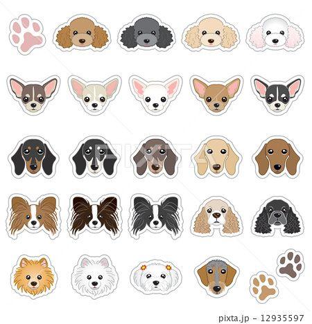 トイプードル プードル のイラスト素材集 トイプードル イラスト 犬 イラスト かわいい チワワ イラスト