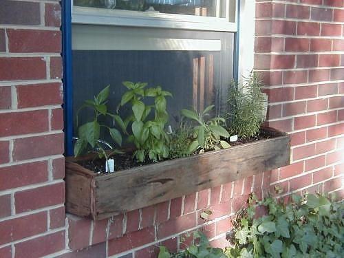 Indoor Herb Garden In Limited E Jpg