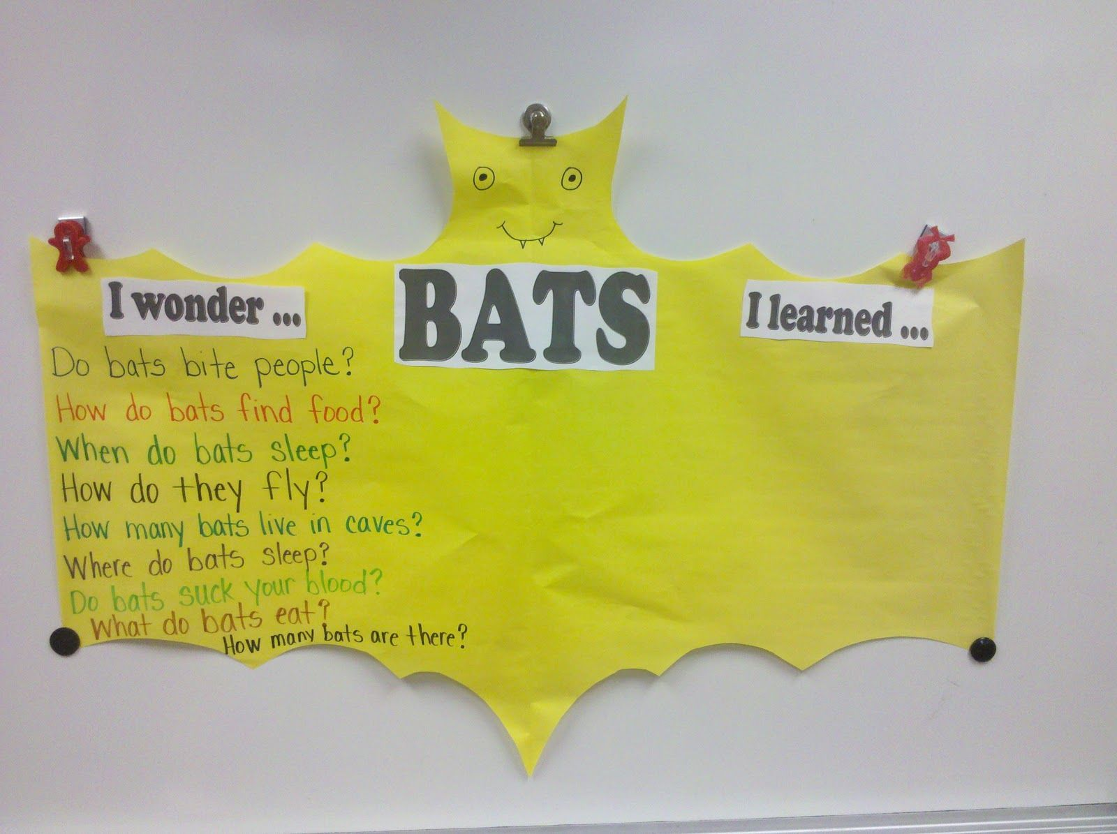 Fun In First Grade Bats