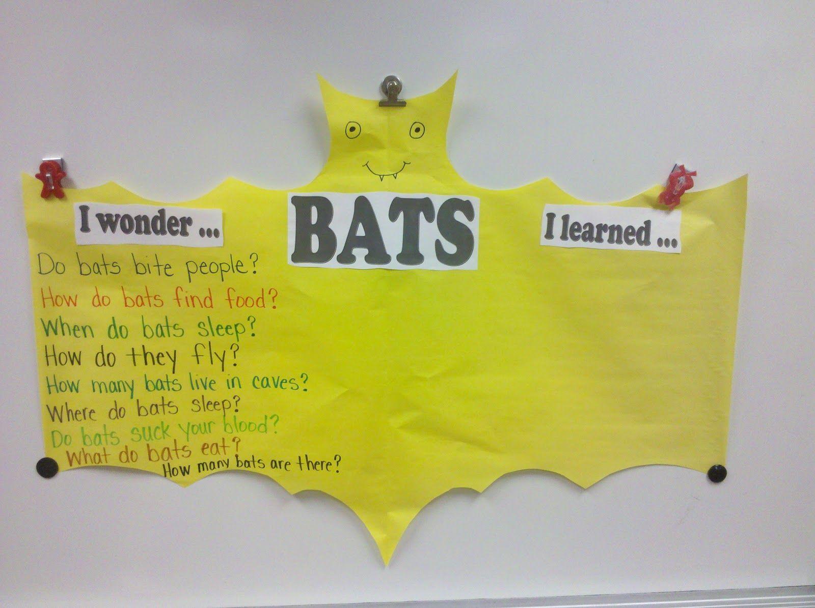 Fun In First Grade Bats