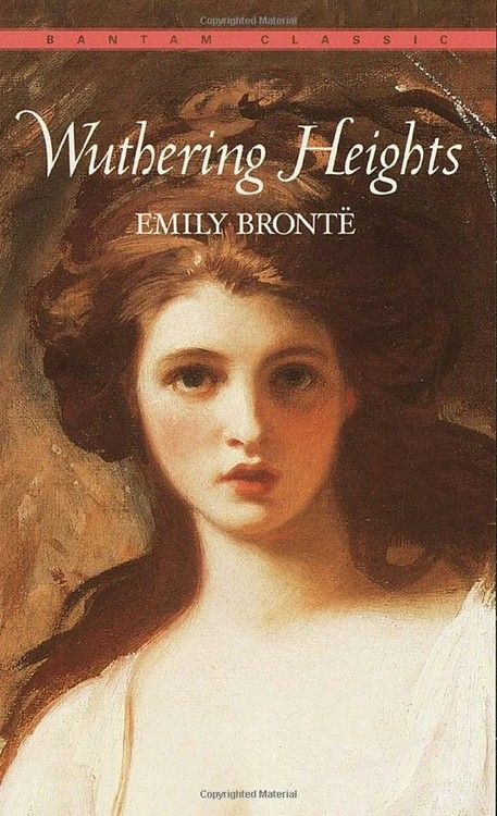 the display of multiple relationships in emily brontes novel wuthering heights Free essay: irrational love emily bronte's wuthering heights and the  and  catherine over the healthier, more stable relationship of cathy and hareton   that makes the novel so multifaceted, it is also brontë's use of multiple narrators  that  of light to create a distinction between the emotions displayed that are  intended by.