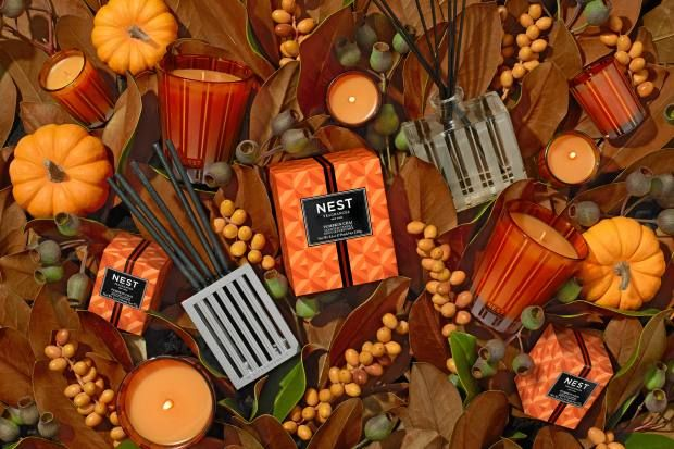 Power to the pumpkin - in art and perfume | Classic ...