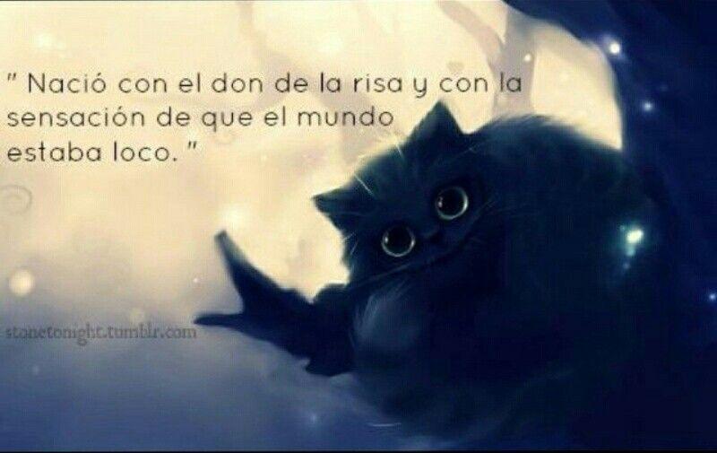 El Gato Cheshire D Gato Sonriente Frases Gato De Alicia