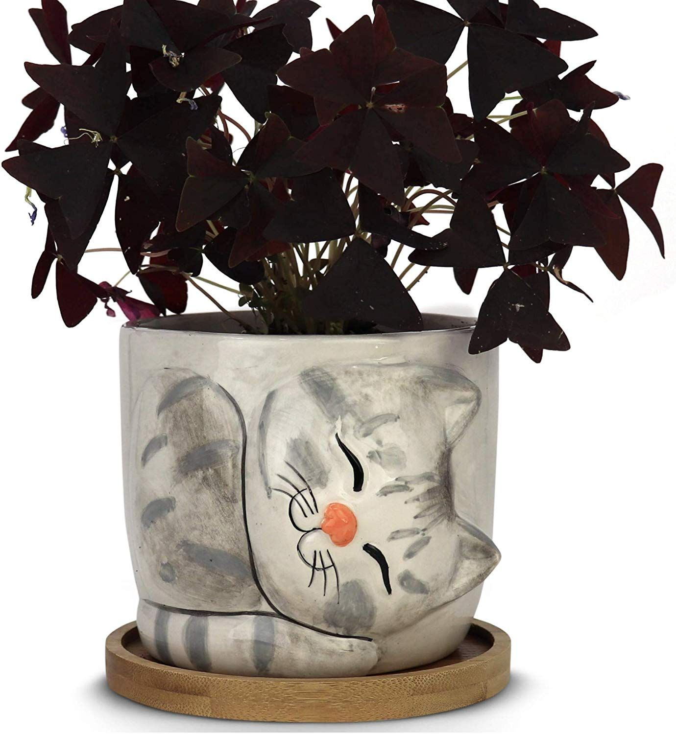 Amazon.com: Window Garden – New Large Kitty Pot (Dusty) – Purrfect for Indoor Live House Plants, Lik