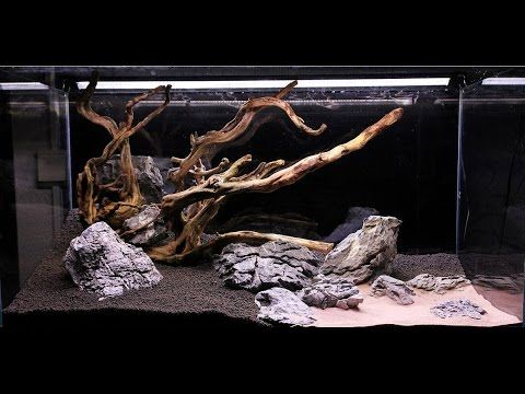Aquascape Step By Step Video In A ADA With Branch Wood And Seiryu Stone  Setup Specification Aquarium: ADA Cube Garden 90 X 45 X 45 Lighting:  Aquatla.