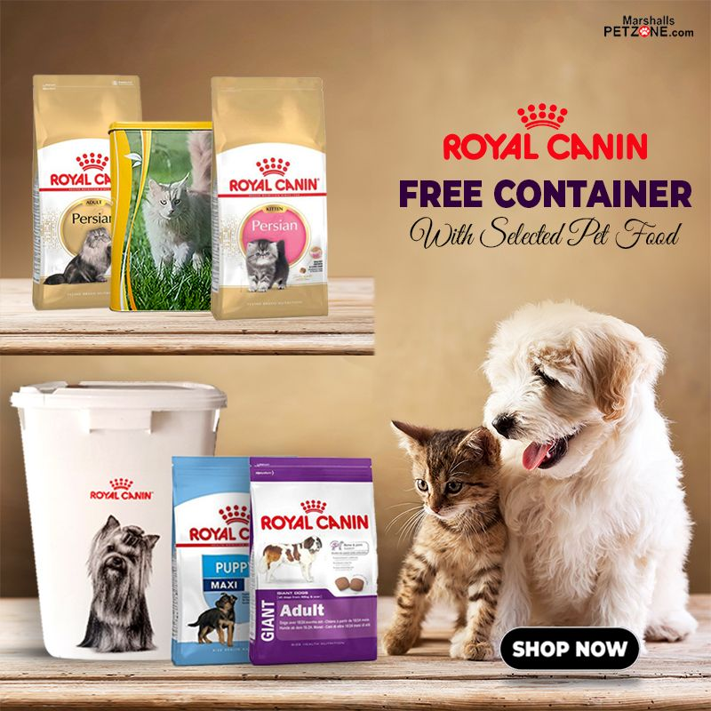 Buy 15kg Dog Food Or 4kg Cat Food And Get A Free Container Royal
