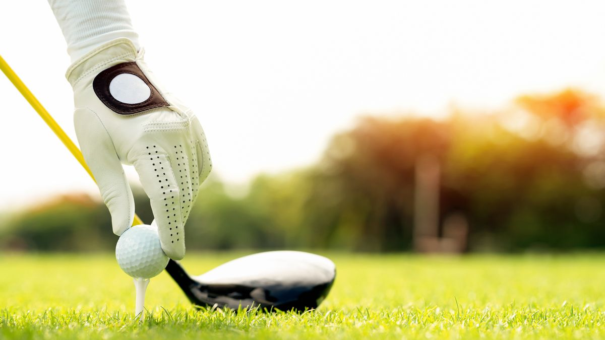 How To Become A Golf Pro Golf Driver Swing Golf Golf Drivers