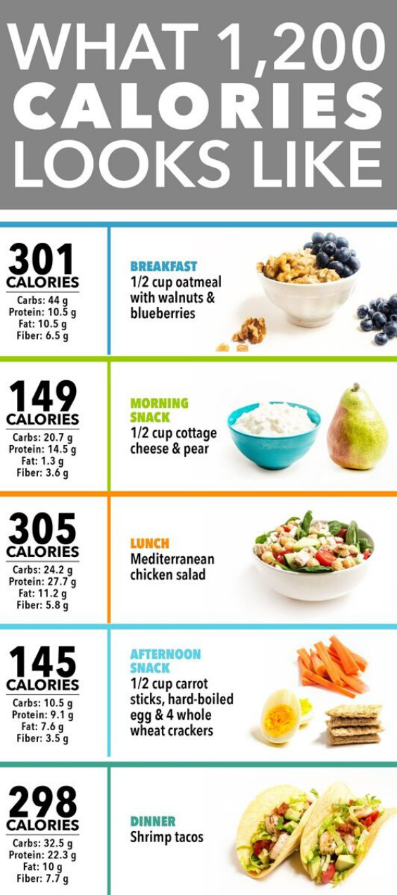 A Day of Food on a High-Protein, Low-Carb Diet