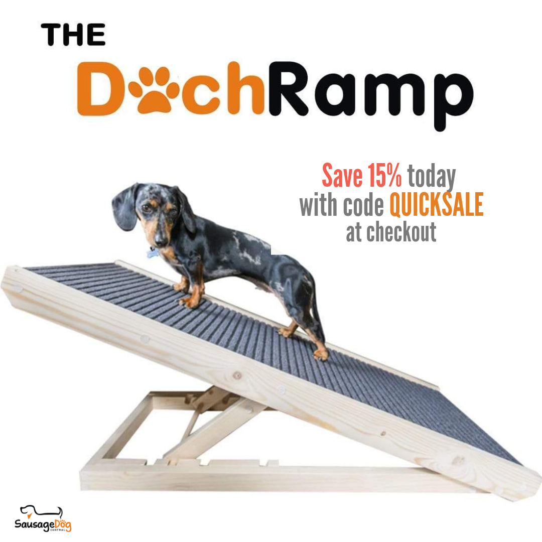 Dachramp Dog Ramp Pet Ramp Portable Dog Kennels