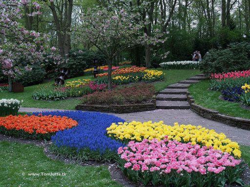 jardines flores plantas jardines parques imagen bellos mundo jardines de keukenhof jardines holland flores