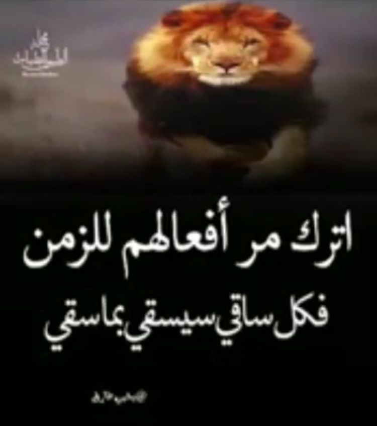 Pin By Jiji 2014 On Arabic Quote Arabic Quotes Places To Visit Words