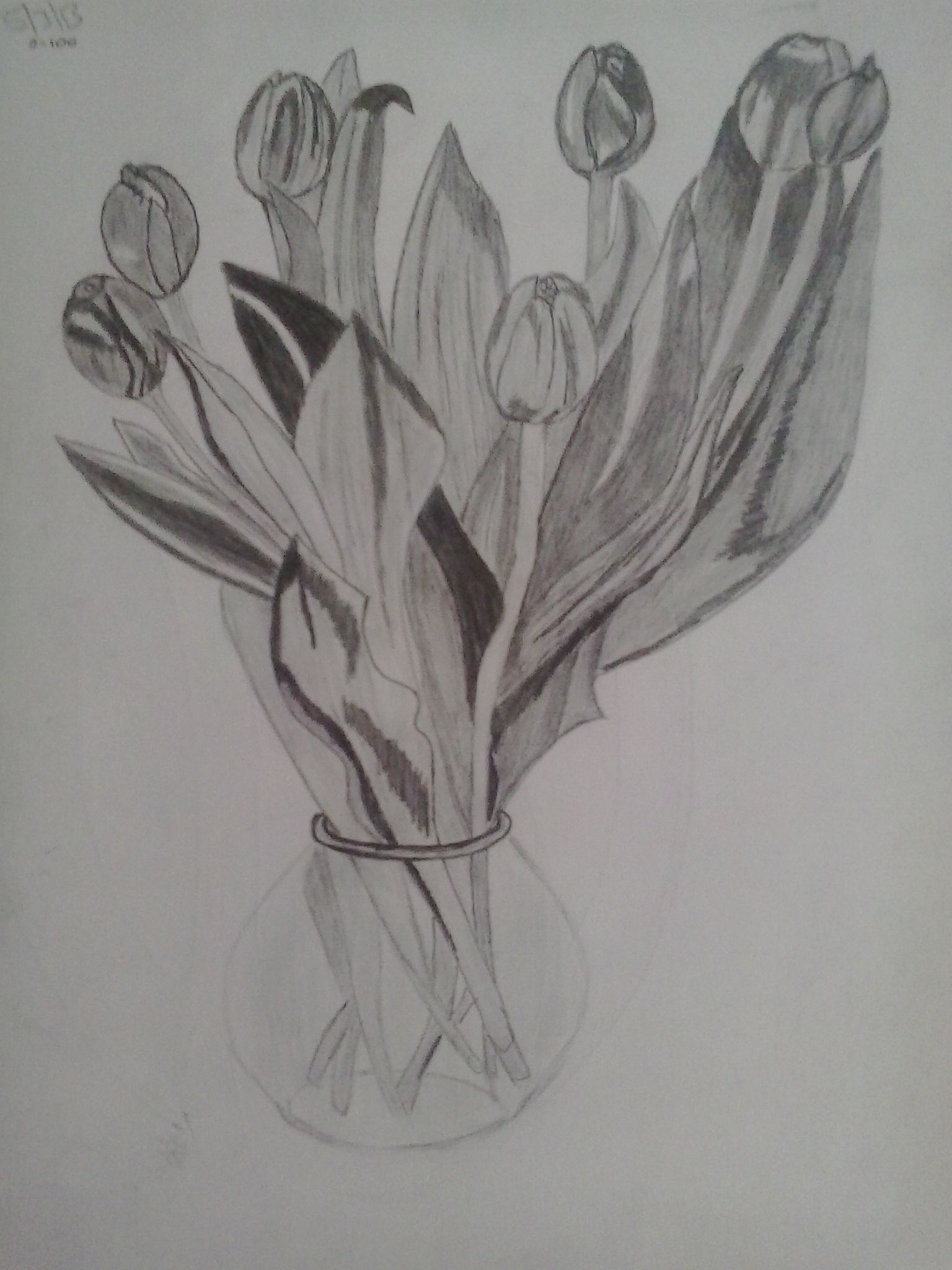 Bunch of flowers in a vase drawing with pencil my sketches bunch of flowers in a vase drawing with pencil reviewsmspy