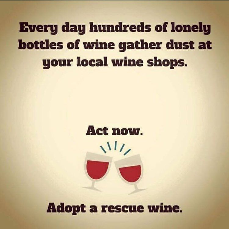 22 Quotes Any Wine-Lover Can Relate To - Simplemost