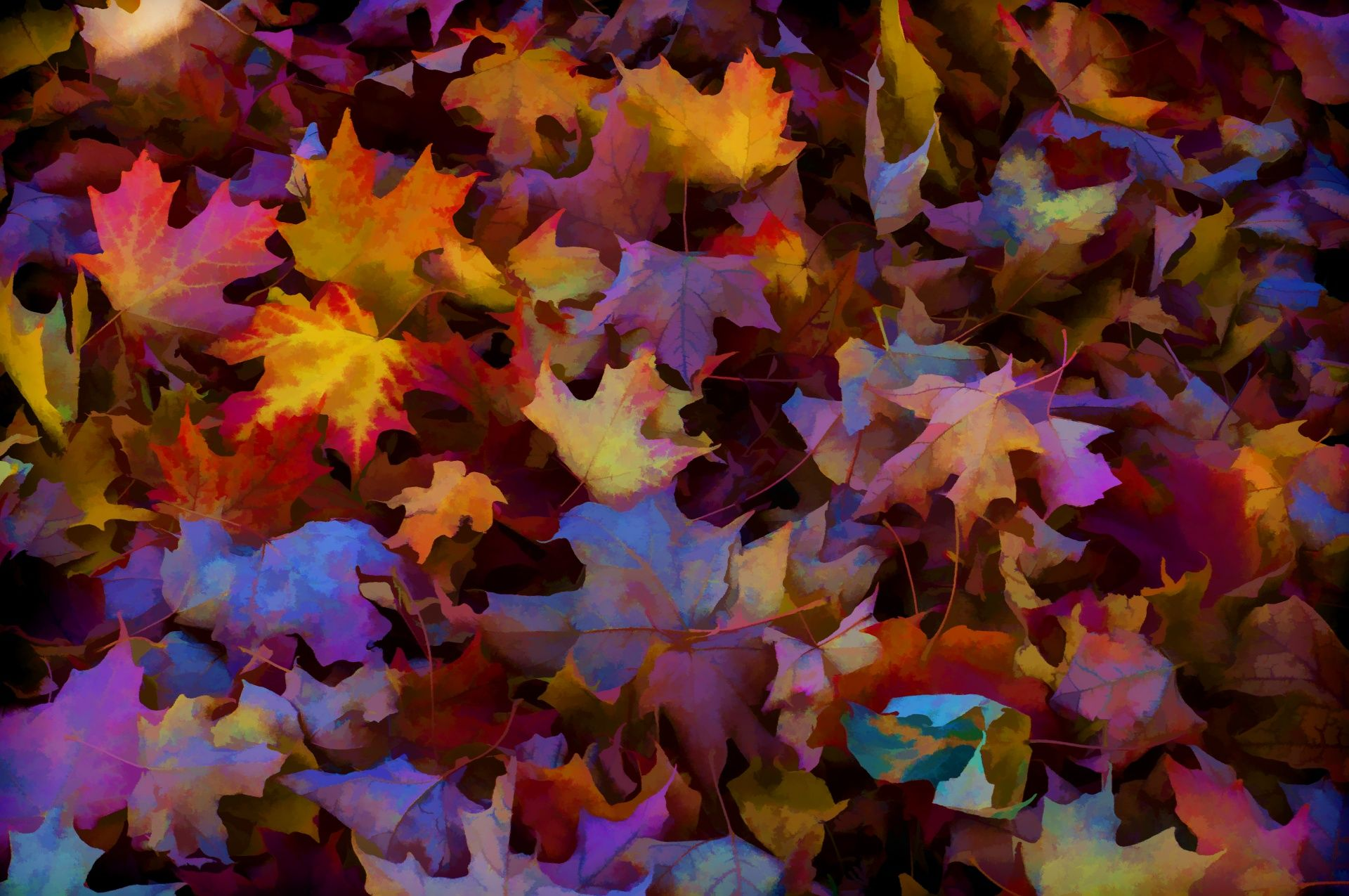 Autumn Leaves Background One Of Over 14 0000 Free Images For Private Or Commercial Use Perfect Autumn Leaves Background Leaf Background Artistic Wallpaper