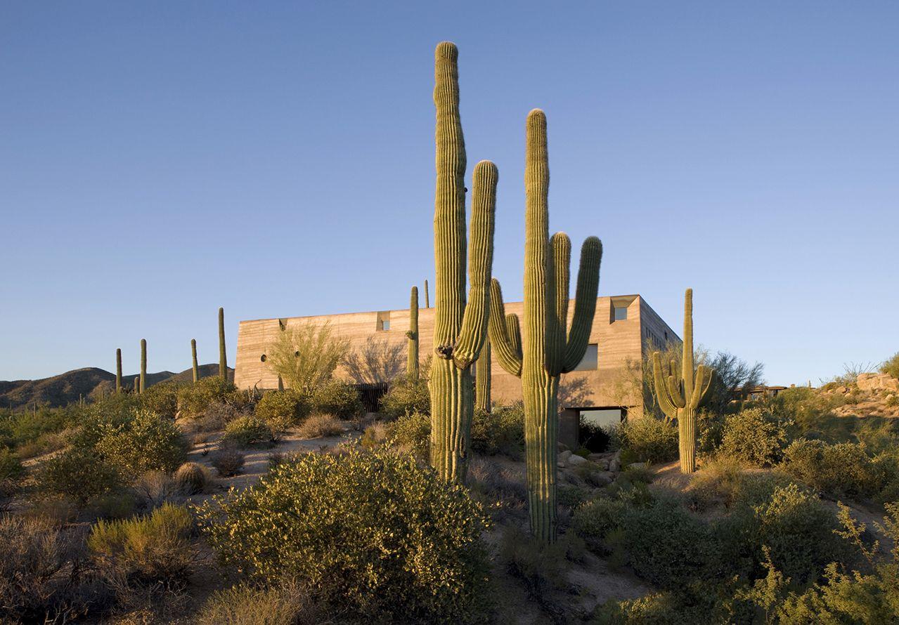 Galeria - Desert Courtyard House / Wendell Burnette Architects - 111